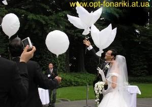 Купить биоголуби (био голуби) для свадьбы по низкой цене